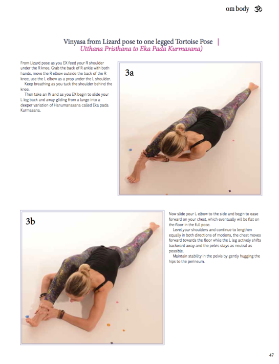 Vinyasa from Lizard pose to one legged tortoise pose